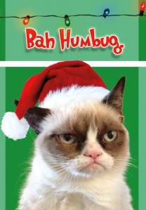 Grumpy Cat makes everything better.