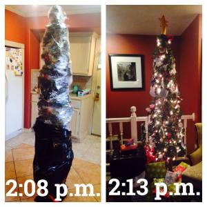 I have no excuse as to why it took me so long to take down my tree since this is the time it took to put it up!