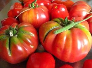Heirloom-Tomato